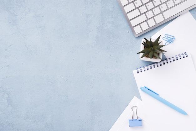 Vista dall'alto di quaderni sulla scrivania con piante succulente e penna Foto Gratuite