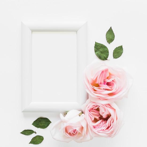 Vista dall'alto di rose e una cornice Foto Gratuite