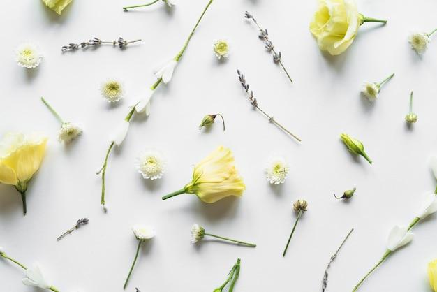 Vista dall'alto di rose gialle Foto Gratuite