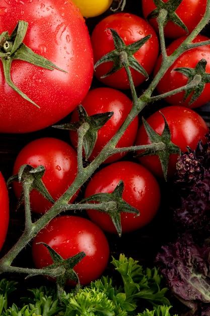 Vista dall'alto di verdure come basilico coriandolo e pomodori Foto Gratuite