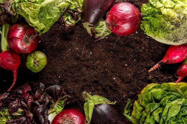 Vista dall'alto di verdure con insalata e melanzane Foto Gratuite