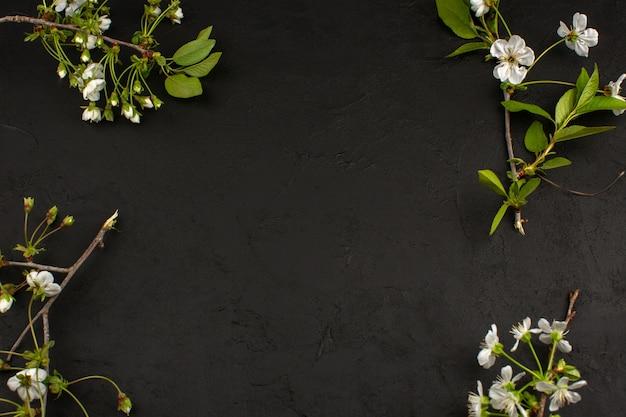 Vista dall'alto fiori bianchi sulla scrivania scura Foto Gratuite