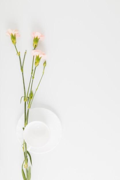 Vista dall'alto fiori e tazza Foto Gratuite