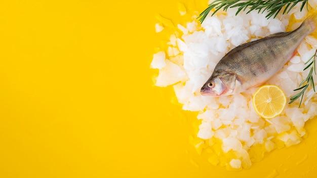 Vista dall'alto pesce fresco con cubetti di ghiaccio e limone Foto Gratuite