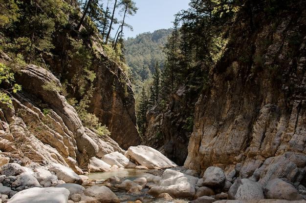 Vista del piccolo fiume nel canyon di goynuk Foto Premium