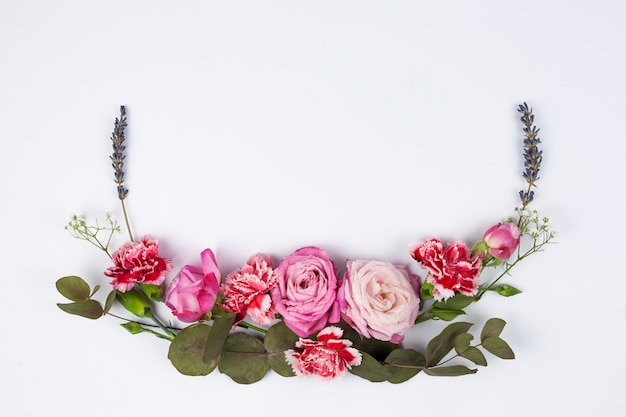 Vista dell'angolo alto di vari fiori freschi sulla superficie di bianco Foto Gratuite
