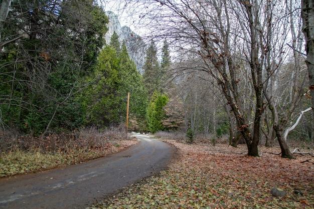 Vista della passeggiata a yosemite national park nella stagione invernale Foto Premium