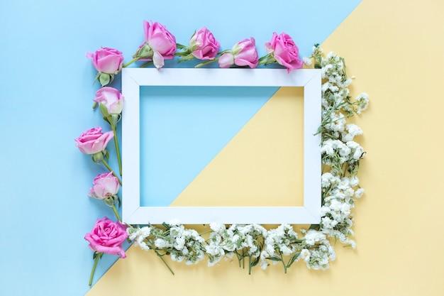 Vista elevata della cornice circostante fiori freschi su doppio sfondo colorato Foto Gratuite