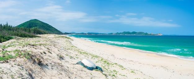 Vista espansiva della spiaggia tropicale appartata e delle dune di sabbia del deserto blu oceano turchese, splendida linea di costa nel vietnam centrale, bai bien tu nham quy nhon Foto Premium