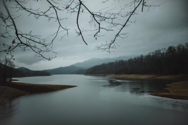 Vista frontale del paesaggio con alberi colline e bellissimo fiume Foto Gratuite