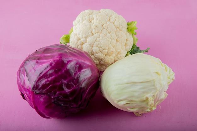 Vista laterale di diversi tipi di cavolo come cavolfiore bianchi e viola su sfondo viola con spazio di copia Foto Gratuite