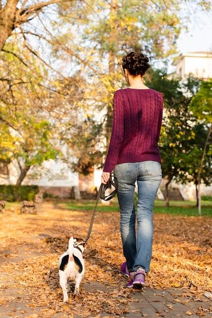 Vista posteriore donna che cammina il suo cane nel parco Foto Gratuite
