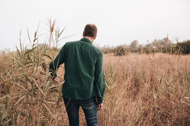 Vista posteriore uomo che cammina attraverso il campo di grano Foto Gratuite