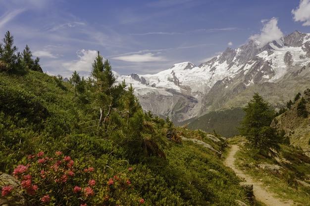 Vista strabiliante di una traccia verde con le montagne nevose in saas-grund, svizzera Foto Gratuite