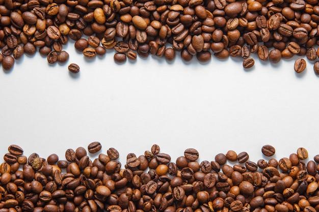 Vista superiore dei chicchi di caffè su uno spazio bianco del fondo per testo Foto Gratuite