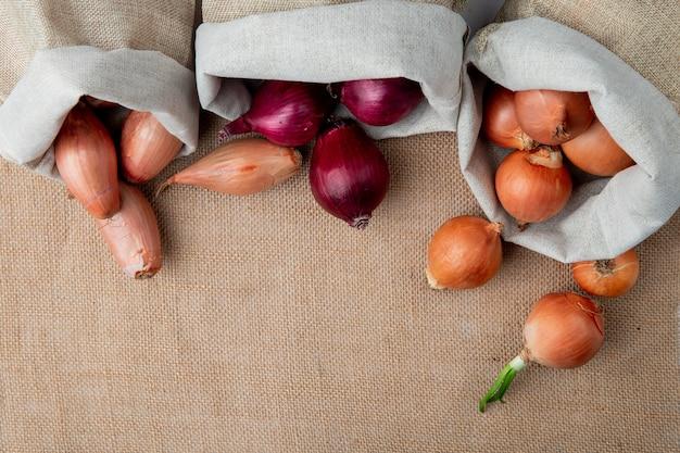 Vista superiore delle cipolle che si rovesciano dai sacchi sul fondo della tela di sacco con lo spazio della copia Foto Gratuite
