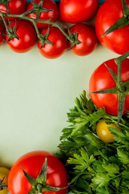 Vista superiore delle verdure come coriandolo e pomodoro su superficie bianca Foto Gratuite