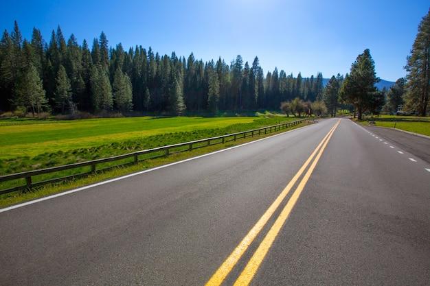 Yosemite wawona road route 41 in california Foto Premium