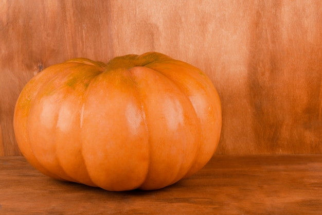 Zucca arancione brillante Foto Premium