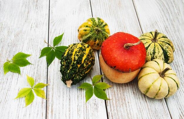 Zucche con foglie d'autunno Foto Premium