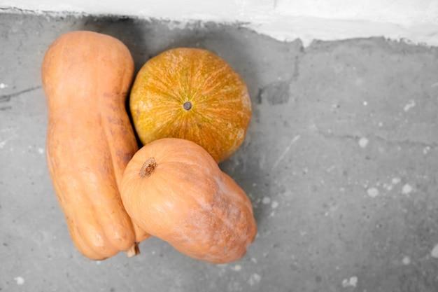Zucche o zucche butternut sulla superficie di calcestruzzo grigia Foto Premium