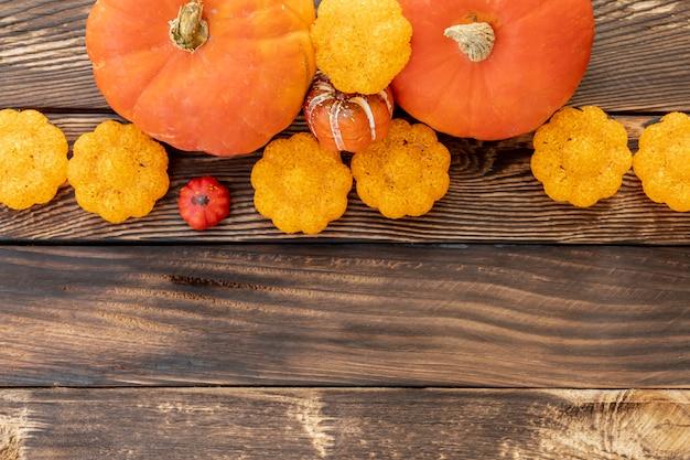 Zucche variopinte di disposizione piana con lo spazio della copia Foto Gratuite