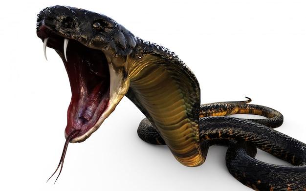 3d ilustração cobra rei a cobra venenosa mais longa do mundo Foto Premium