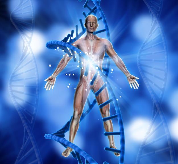 3d, render, médico, fundo, macho, figura, adn, costas Foto gratuita