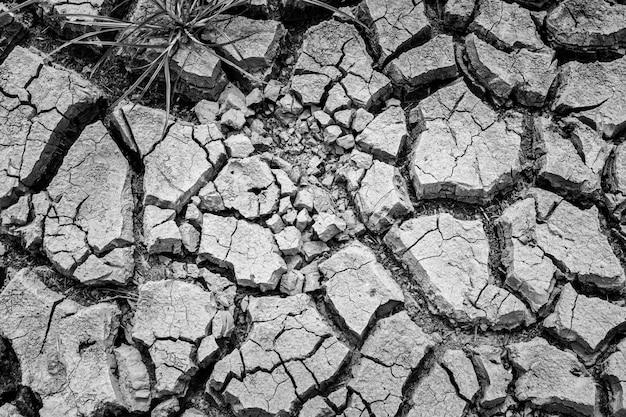 A argila seca e quebrada moeu durante a estação da seca, conceito do problema do aquecimento global. Foto Premium