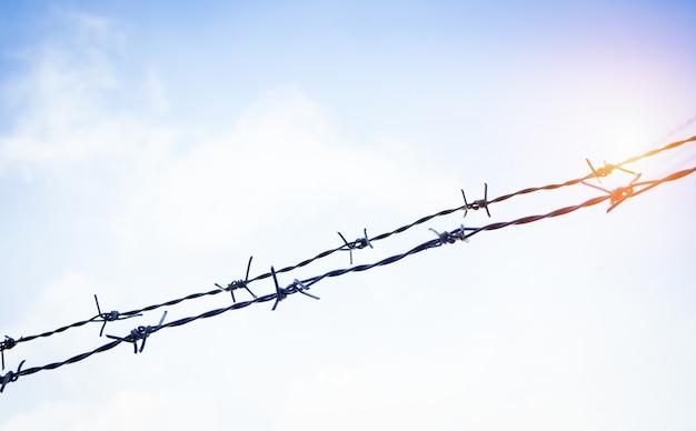 A cerca de arame farpado de silhueta, feita de ferro, espinho e ferrugem de muito tempo usado Foto Premium
