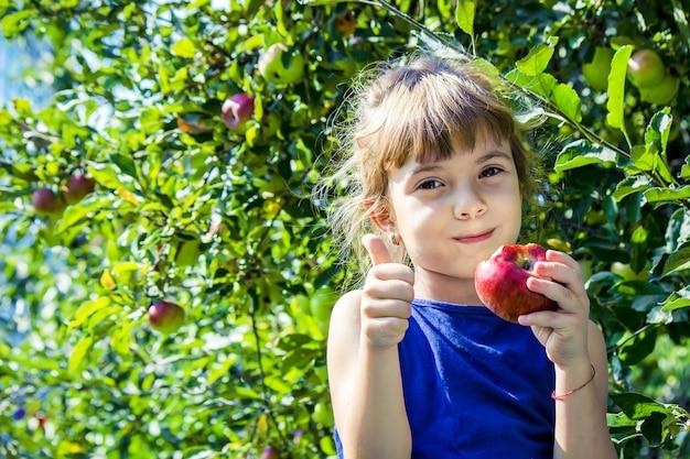 A criança está comendo uma maçã no jardim. foco seletivo. Foto Premium