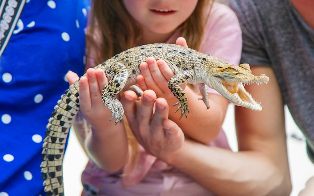 A criança tem um pequeno crocodilo nas mãos. Foto Premium