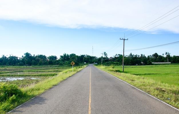 A estrada passa campo de arroz verde Foto Premium