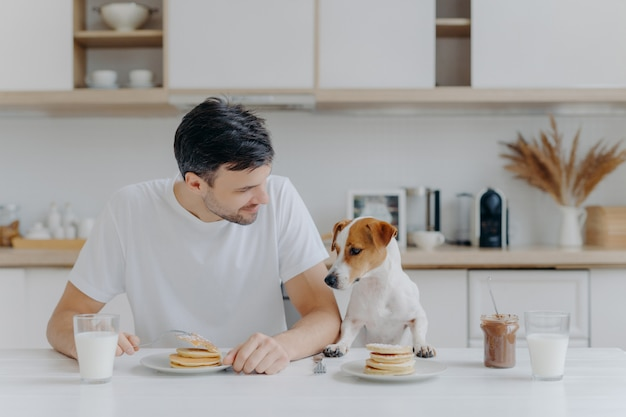 A imagem do homem europeu barbeado moreno passa o tempo livre junto com o cão de raça, come panquecas na cozinha, gosta de sobremesa doce, vestida casualmente. café da manhã, família, animais e comer conceito Foto Premium