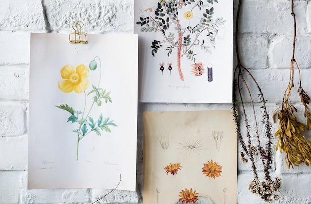 A imagem vai a mão que tira a coleção das flores em um quadro Foto gratuita