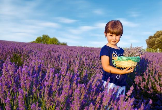 A menina feliz está em um campo da alfazema guarda uma cesta do flowe Foto Premium
