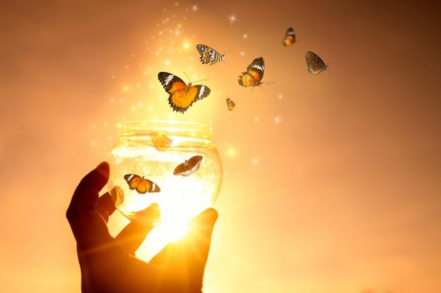 A menina liberta a borboleta do frasco, momento azul dourado conceito de liberdade Foto Premium