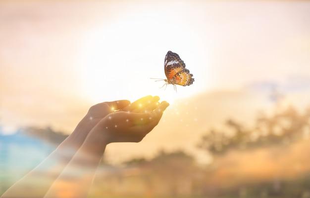 A menina liberta a borboleta do momento conceito de liberdade Foto Premium
