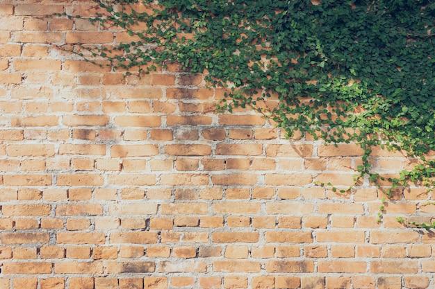 A parede é feita de tijolos e depois pintada de branco Foto Premium