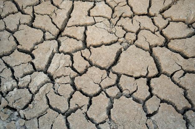 A seca do solo racha o fundo da textura para o projeto. Foto Premium