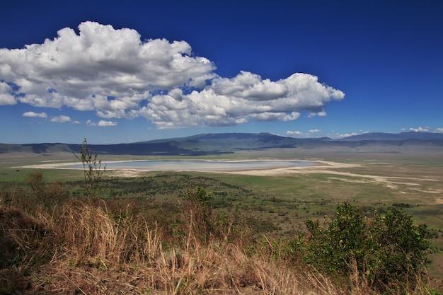A vista no parque nacional de ngorongoro, tanzânia Foto Premium