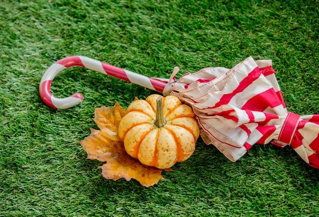 Abóbora e folha com guarda-chuva no gramado verde Foto Premium