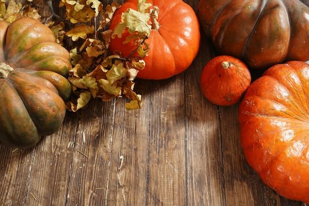 Abóbora em fundo de madeira. outono ainda vida de abóbora em um piso de madeira marrom. close-up de abóbora tiro do ponto superior. Foto Premium