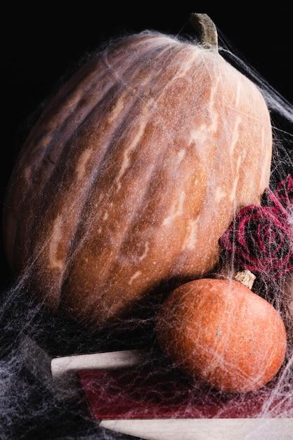 Abóboras com teia de aranha e rosas Foto gratuita