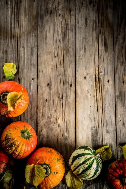 Abóboras de outono em uma tabela Foto Premium