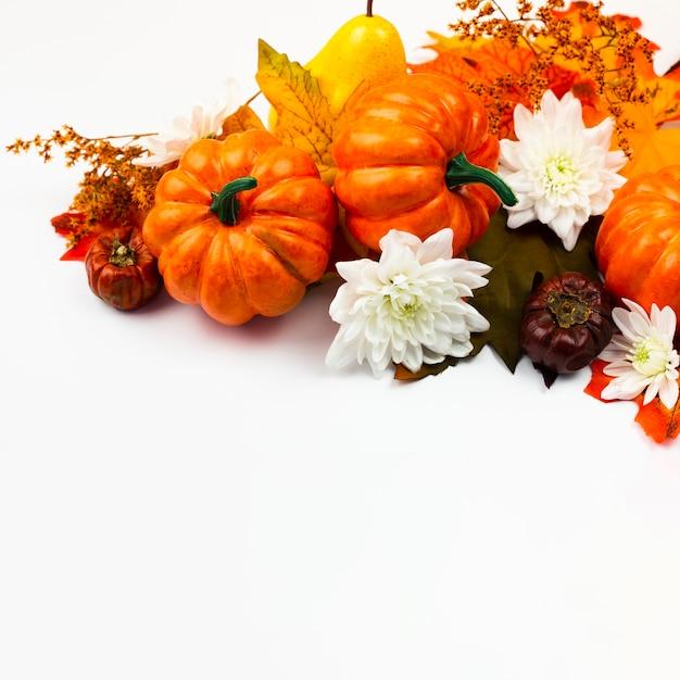 Abóboras de vista frontal com flores Foto gratuita