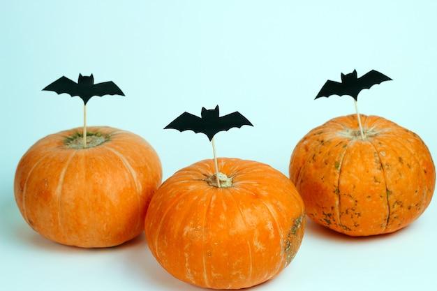 Abóboras decoradas com papel cortado morcegos em um fundo branco Foto Premium