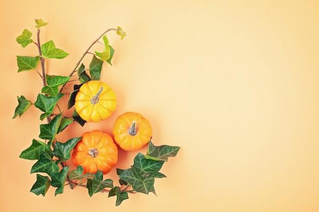 Abóboras e folhas sobre fundo pastel Foto Premium