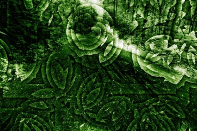 Abstrato orgânica Foto gratuita