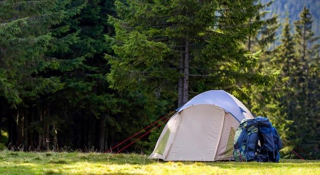 Acampamento turístico no prado verde com grama fresca na floresta de montanhas dos cárpatos. caminhantes tenda e mochilas no parque de campismo. estilo de vida ativo, atividade ao ar livre, férias, esportes e conceito de recreação. Foto Premium